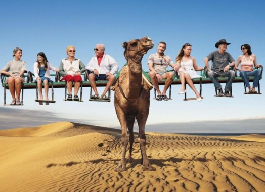 CAMEL TRANSPORT